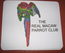 03-2013 McCaw Club 026